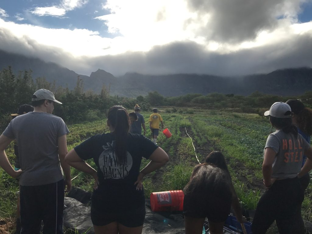 Dr. Alika Maunakea and YLT participants on a weeding day